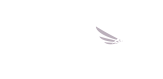 A Robert Wood Johnson Foundation Program